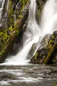 stock photo of priceless  - close up of national creek falls in oregon with slow flowing water over the rocks and logs - JPG