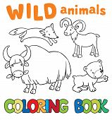 picture of yaks  - Coloring book or coloring picture with wild animals - JPG