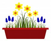 stock photo of planters  - vector spring flowers in planter isolated on white background - JPG