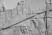 stock photo of xerxes  - Persepolis world heritage archeological site Persia Iran - JPG