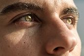 pic of  eyes  - Close - JPG