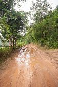 stock photo of rainy season  - Dirt road in a rural area through the forest in the rainy season - JPG