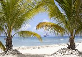 stock photo of cruise ship caribbean  - The view of Seven Mile beach with a cruise ship in a background  - JPG