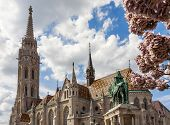 picture of church  - Matthias Church is a Roman Catholic church in the Romanesque style - JPG