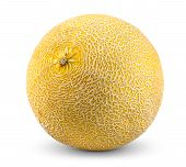 picture of muskmelon  - Ripe melon isolated on white background  - JPG