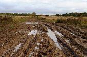pic of boggy  - Messy rural dirt road after the rain with large muddy puddles - JPG
