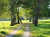 stock photo of bohemia  - view autumn landscape southern Bohemia  - JPG