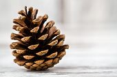 picture of pine cone  - Natural dry pine cones on wooden white table background  - JPG