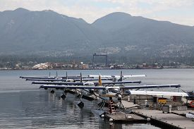 picture of float-plane  - A line up of float planes in Vancouver harbour - JPG