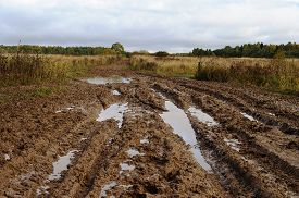stock photo of boggy  - Messy rural dirt road after the rain with large muddy puddles - JPG