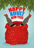 Prostitute In Red Sack Of Santa Claus. Happy Adult New Year. Whore For Present. Congratulations For poster