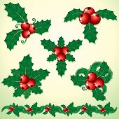 picture of winterberry  - Christmas Holly twigs - JPG