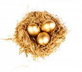 foto of priceless  - Gold eggs in the gold nest - JPG