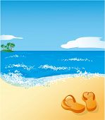 stock photo of summer beach  - Beach - JPG