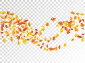 Oak And Maple Leaf Abstract Background Seasonal Vector Illustration. Autumn Leaves Flying Graphic De poster