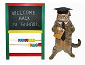 The Cat Teacher In A Square Academic Hat Is Holding A Book  Abc  Near The Blackboard. White Backgr poster