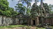Giant Tree Roots Covering Ta Prom Temple, Siem Reap, Cambodia, Landmark In Siem Reap, Cambodia. Angk poster