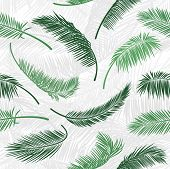 Tropical Green Palm Tree Leaves In Seamless Pattern. Vector Pattern For Print Design, Wallpaper, Sit poster