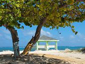stock photo of collier  - Colliers Public Beach in the East End district of Grand Cayman - JPG
