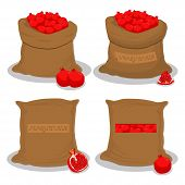 Vector Illustration Logo For Bags Filled With Red Pomegranate, Storage In Sacks. Pomegranate Pattern poster