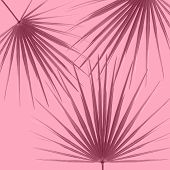 Minimal Background With Pink Palm Leaves On Pink Pastel. Minimal Pattern poster