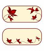 image of six-petaled  - Business card floral rectangle  floral vector EPS8 illustration set of six - JPG
