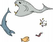 stock photo of food chain  - Cartoon of ocean food chain over white background - JPG