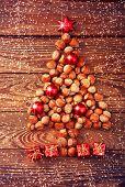 pic of hazelnut tree  - Hazelnuts - JPG