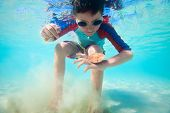 image of sand dollar  - Cute little boy swimming underwater in tropical sea with sand dollar - JPG