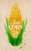 foto of sweet-corn  - Poster with watercolor corn lettering sweet corn natural home grown - JPG