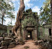 picture of mural  - Angkor Wat Cambodia - JPG