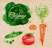 picture of peas  - Vegetables set drawn watercolor blots and stains with a spray cabbage - JPG