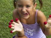 foto of greedy  - photo of Greedy child plays with raspberries - JPG