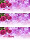 picture of mums  - Three pink rose heads in left hand corner with soft bokeh pale pink backgrounds graduating to white and the word mum and mother fading into the white - JPG