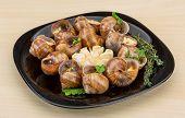 pic of escargot  - Escargot with rosemary thyme garlik and melissa - JPG