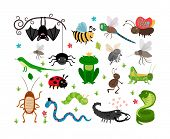picture of cockroach  - Set of cute vector insects and reptiles - JPG