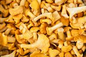 stock photo of orange peel  - close - JPG