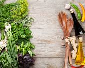 picture of condiment  - Fresh garden herbs and condiments over wooden table - JPG