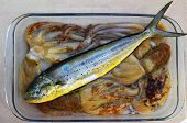 picture of mahi  - Dolphin fish dorado octopus and cuttlefish fishing catch - JPG