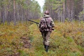 image of hunter  - hunter walking with gun on the forest road - JPG