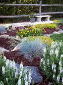pic of chicken-wire  - A stone bench near a perennial garden - JPG