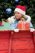 pic of christmas ornament  - Little girl in Christmas sledge - JPG