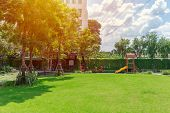 Green Lawn Field Backyard Playground Nature Garden Outdoor Space For Children Background. poster