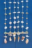 stock photo of windchime  - An arrangement of seashells as windchimes or a decoration - JPG