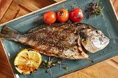 Fresh Grilled Dorado with Lemon and Cherry Tomatoes. Whole Bbq Sea Bream Fish Top View and Flat Lay. poster