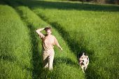 stock photo of alsatian  - 50 years old woman walking with alsatian dog at summer field - JPG