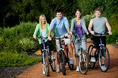 stock photo of young adult  - A group of four adults on bicycles in the countryside - JPG