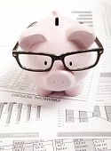Pink piggy bank and financial report
