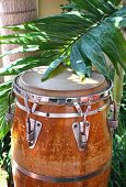 foto of congas  - Caribbean style conga drum among the palm trees - JPG