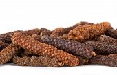 pic of naturel  - Long pepper or Piper longum on white background - JPG